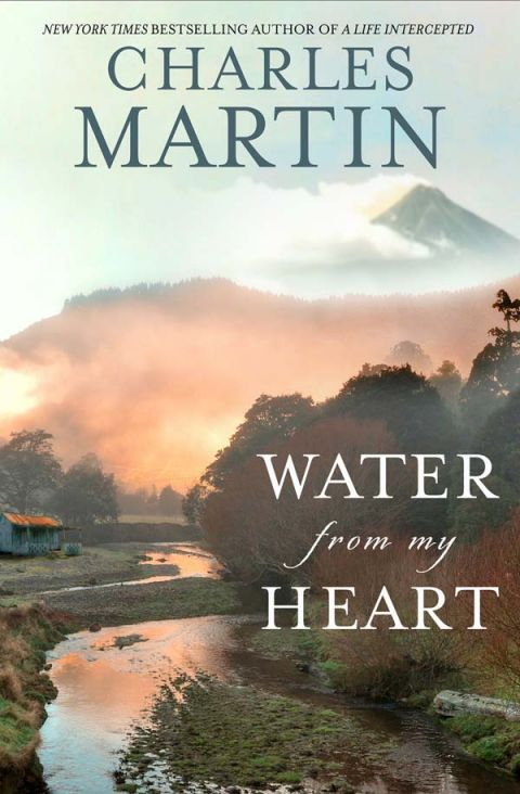 Water From My Heart A Novel By Author Charles Martin
